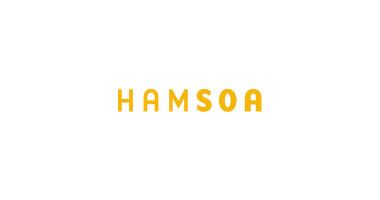 HAMSOA